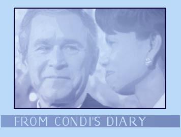 Condi_diary_header_060505_1