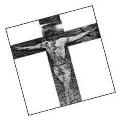 Cross_bw_tilt