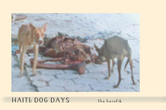 Haiti_dog_days