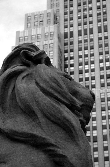 Lionheade